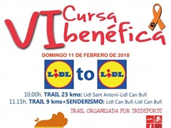 Lidl to Lidl 2019